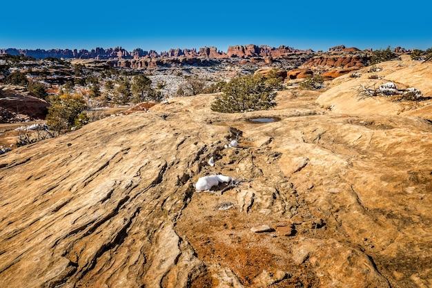 Панорамный вид на район нидлс в национальном парке каньонлендс, штат юта
