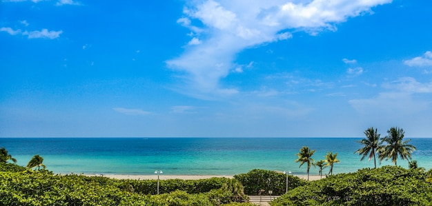 Panoramic view of paradise beach in miami with copy space