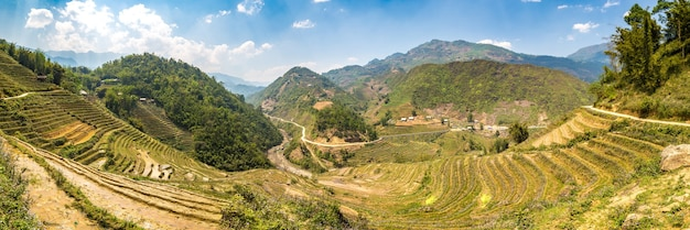 Panoramic view of terraced rice field in sapa in lao cai in vietnam