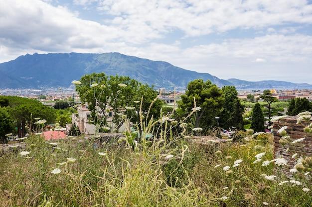 고대 도시 폼페이 나폴리 이탈리아에서 산의 전경