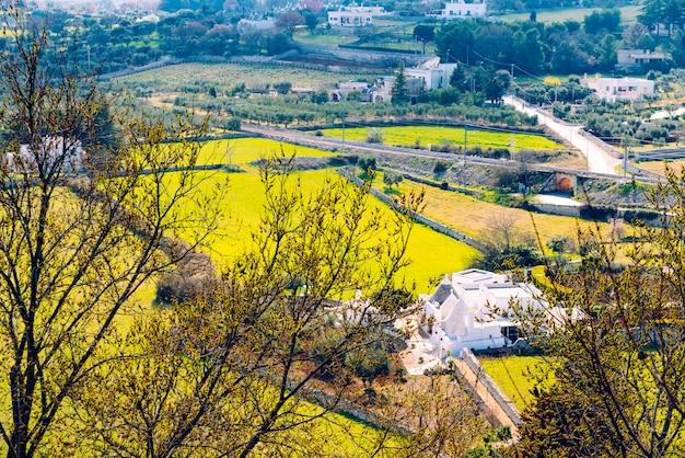 Panoramic view of the valley of the italian city of locorotondo