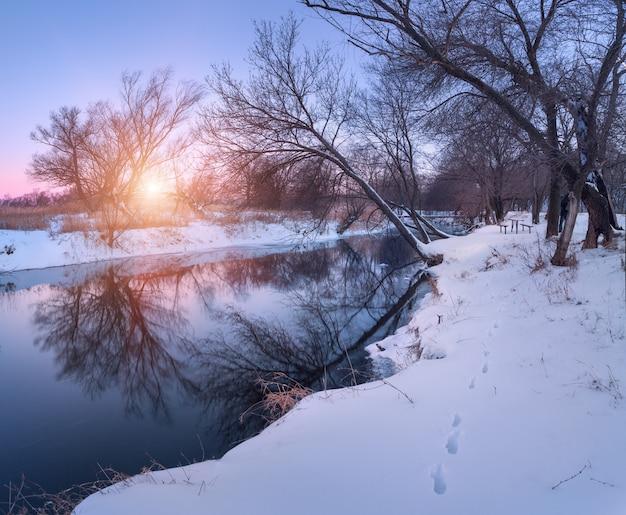 나무, 일몰에서 아름 다운 강 파노라마 겨울 풍경. 겨울 숲. 시즌.
