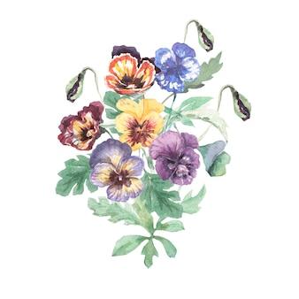 パンジーの花手描き水彩イラスト