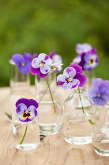 Цветы анютины глазки в химической посуде, украшение стола в саду