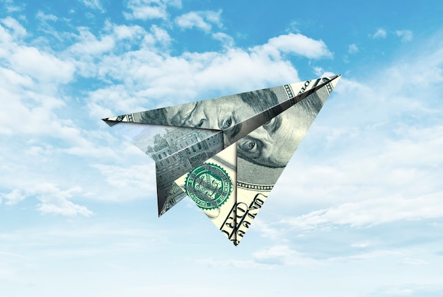 Paper airplane from banknote Premium Photo
