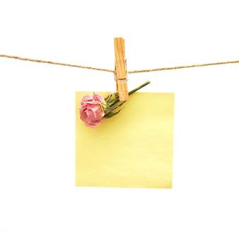Бумага и розовая роза с прищепкой над белой