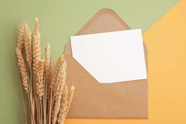 Paper in autumn pastel colors with decoration and copy space
