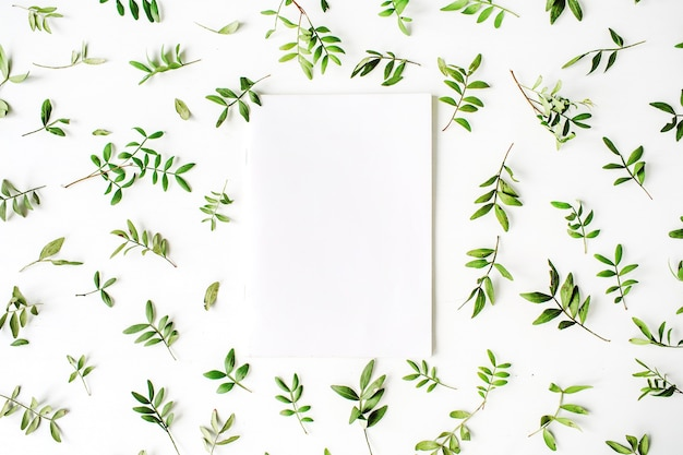 Paper blank, green branches and leaves