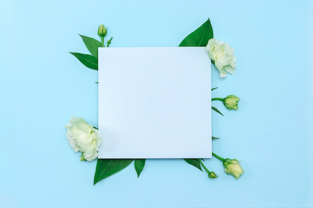 Paper blank with fresh white flowers on pastel blue