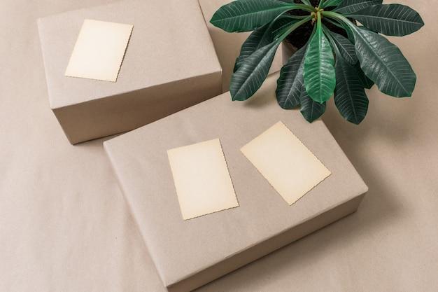 Бумажная коробка фон завод открытка шоппинг тропический зеленый