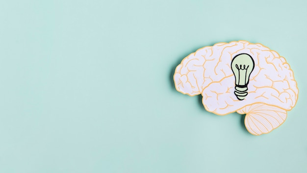 Бумажный мозг с лампочкой и копией пространства