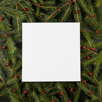 Paper on composition of berries and fir branches