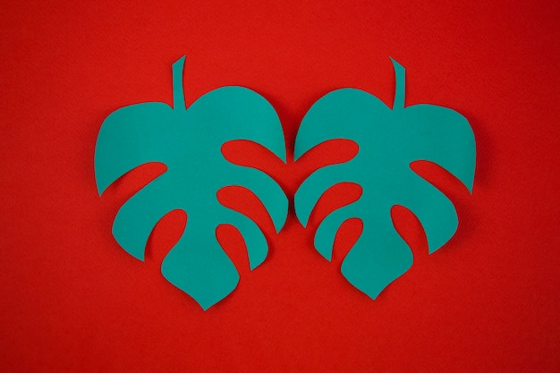Paper cut style of monstera leaves