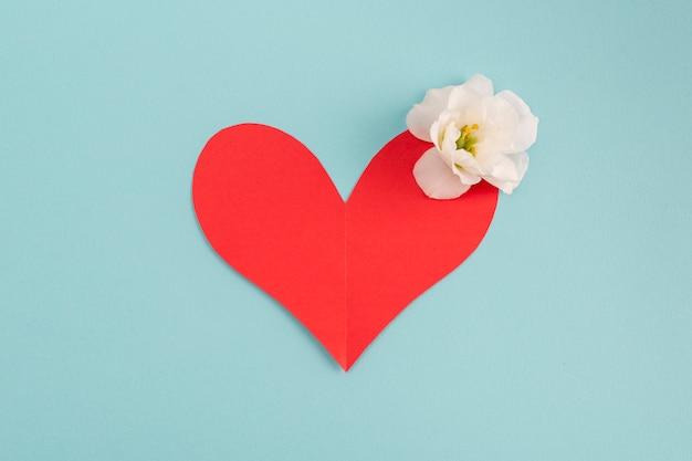 Cuore di carta con bocciolo di fiori freschi