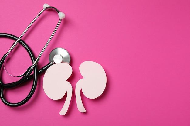 Бумажные почки и стетоскоп на розовом