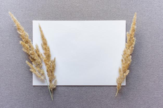 Шаблон бумажного макета с двумя пушистыми ветками полевых растений на бежевой текстурированной ткани