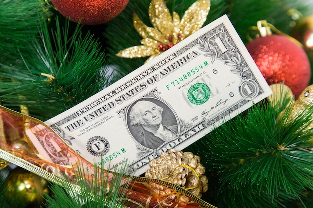 Paper money on a christmas tree.
