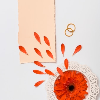 Paper near rings and fresh flower on plate