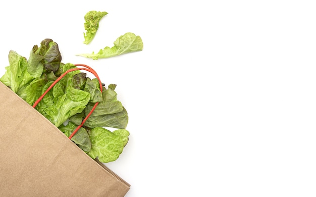Paper pack bag with green salad leaves, lettuce on white background, layout with space for text