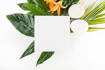 葉やココナッツの近くの紙シート