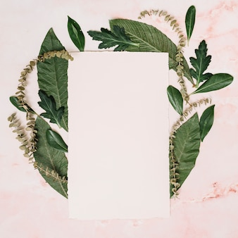 Paper sheet with leaves and branches on table