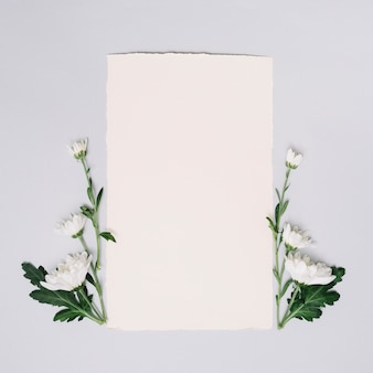 Paper sheet with small flowers on table