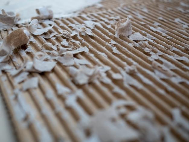 Paper shred of cardbord