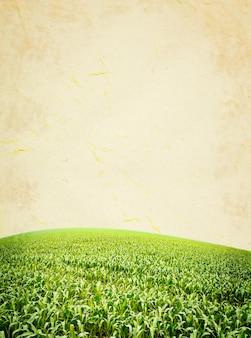 紙の質感。グランジとレトロなスタイルの緑のフィールド