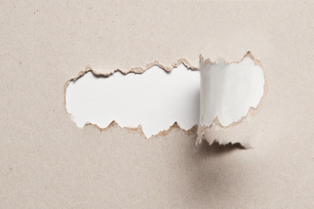 Paper texture with torn half piece of middle