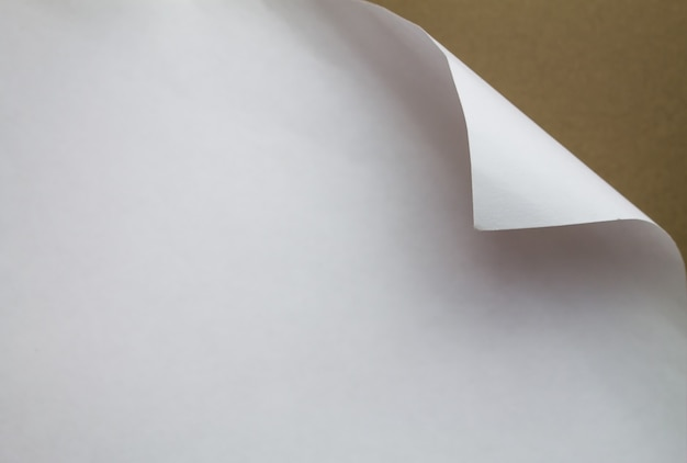 Paper with curled edge.