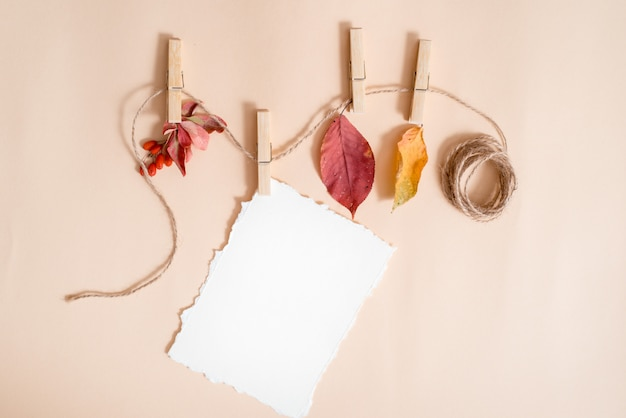 Paper for your notes. torn paper trend.autumn leafs in a clothes line held by clothespins. elderberry and barberry, fruits and dry leaves. autumn card,flat lay, top view. copyspace.