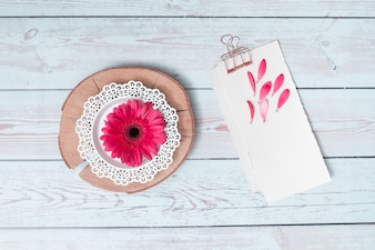 Papers with petals near flower on wood round
