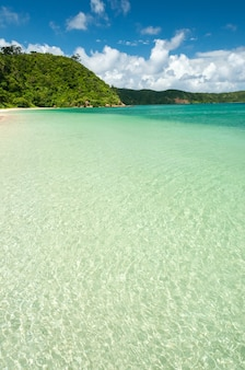 Paradise beach crystalline emerald green sea bright waters lush vegetation mountains