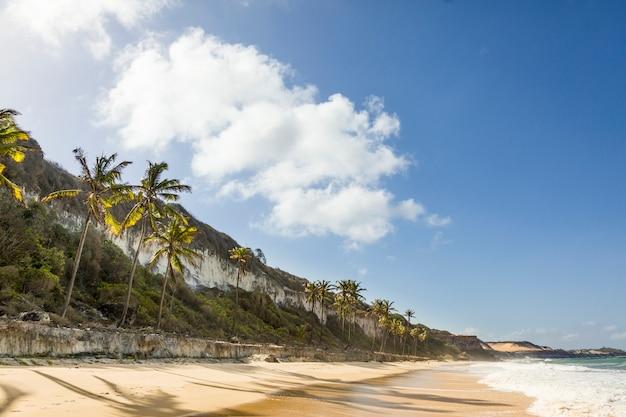 Райский пляж в пипе, риу-гранди-ду-норти, бразилия.
