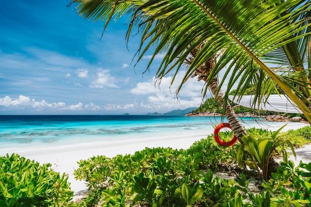 セイシェルのマヘ島にあるパラダイスプチアンスビーチ。ハイシーズンの休日の休暇の背景。