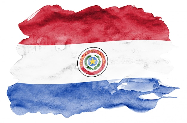 Paraguay flag  is depicted in liquid watercolor style isolated on white