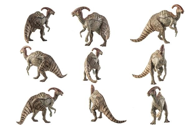 Parasaurolophus dinosaur on white background .