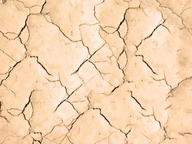 乾いた地球のテクスチャ