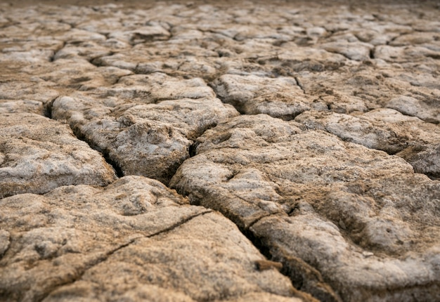 The parched soil and cracked