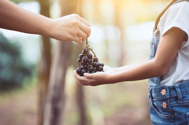 親はthemselveによって収穫された赤ブドウの束を、ブドウ園の子供に一緒に与える
