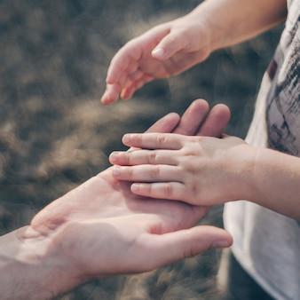 親は小さな子供の手を握る。父は子供を手に持っています。