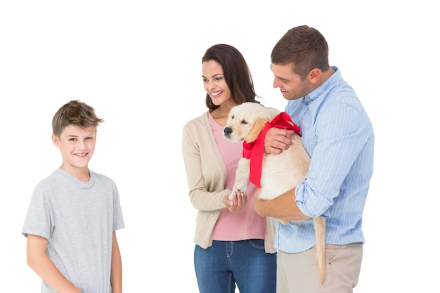 子犬に子犬を贈っている親は、白い背景