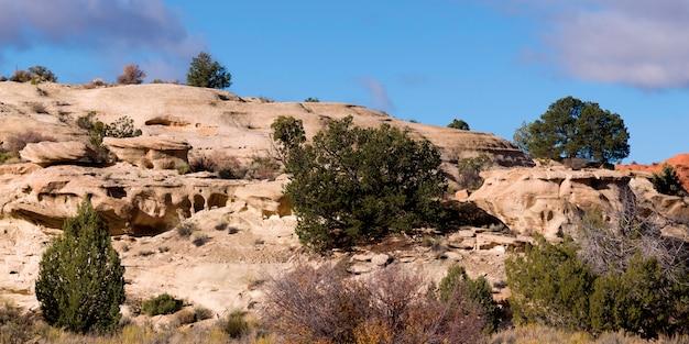 岩の形成paria canyon、paria、kane county、utah、usa