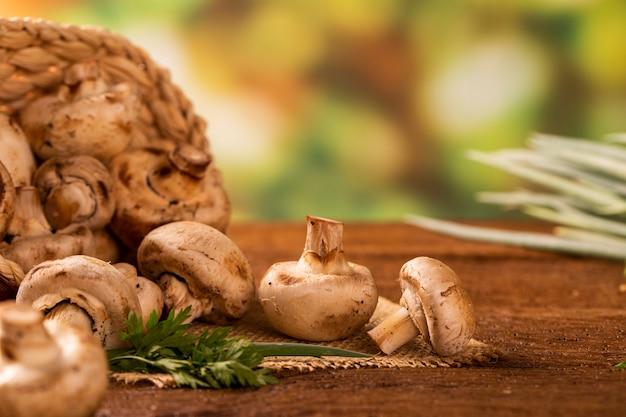 파리 또는 샴 피뇽 버섯