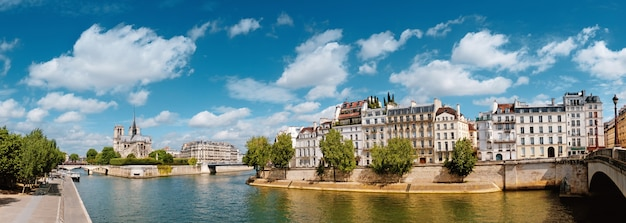 Paris, river seine with notre-dame cathedral in spring