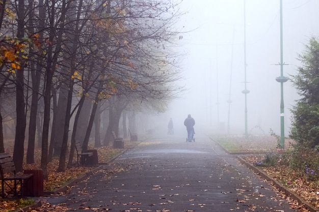 The park alley covered with fallen leaves in a foggy morning. people take a walk in the autumn park