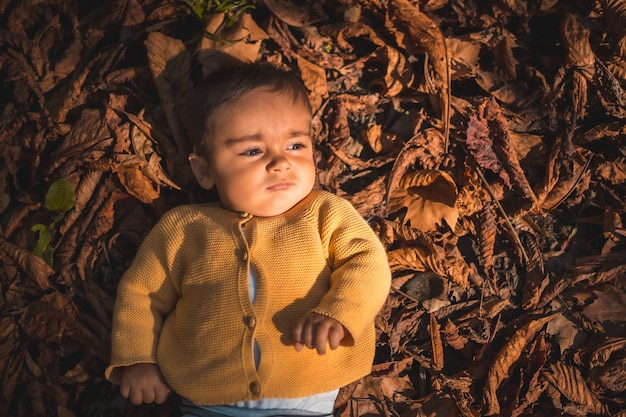 Park in an autumn sunset, six-month-old baby lying in the leaves of the trees