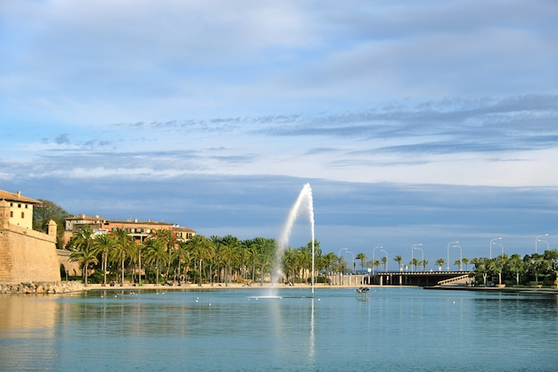 Park de la mar with lagoon lake and palm trees in palma de mallorca