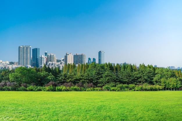 공원 잔디와 도시 스카이 라인 배경