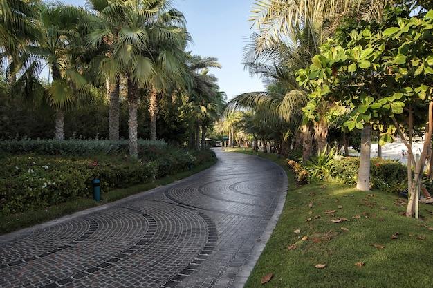 Парк в отеле атлантис
